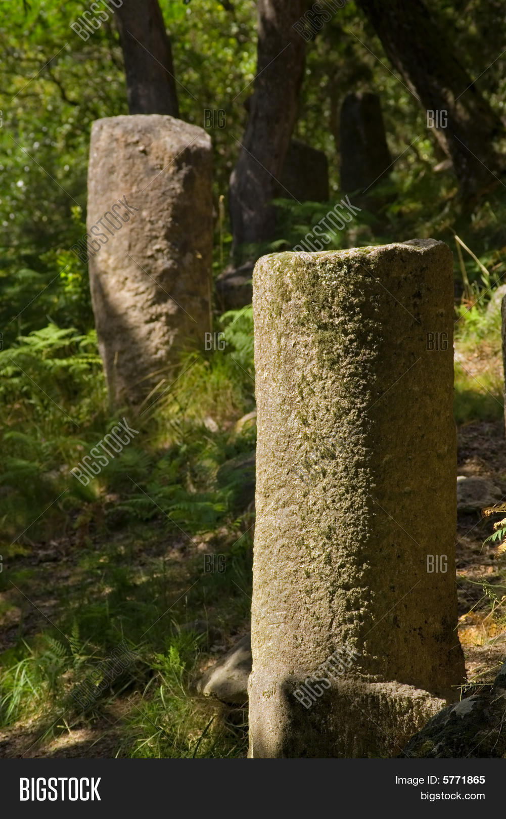 Roman mile markers on the ancient roman road (geira) that connected Bracara Augusta to Asturica Augusta. Gerês, Portugal.