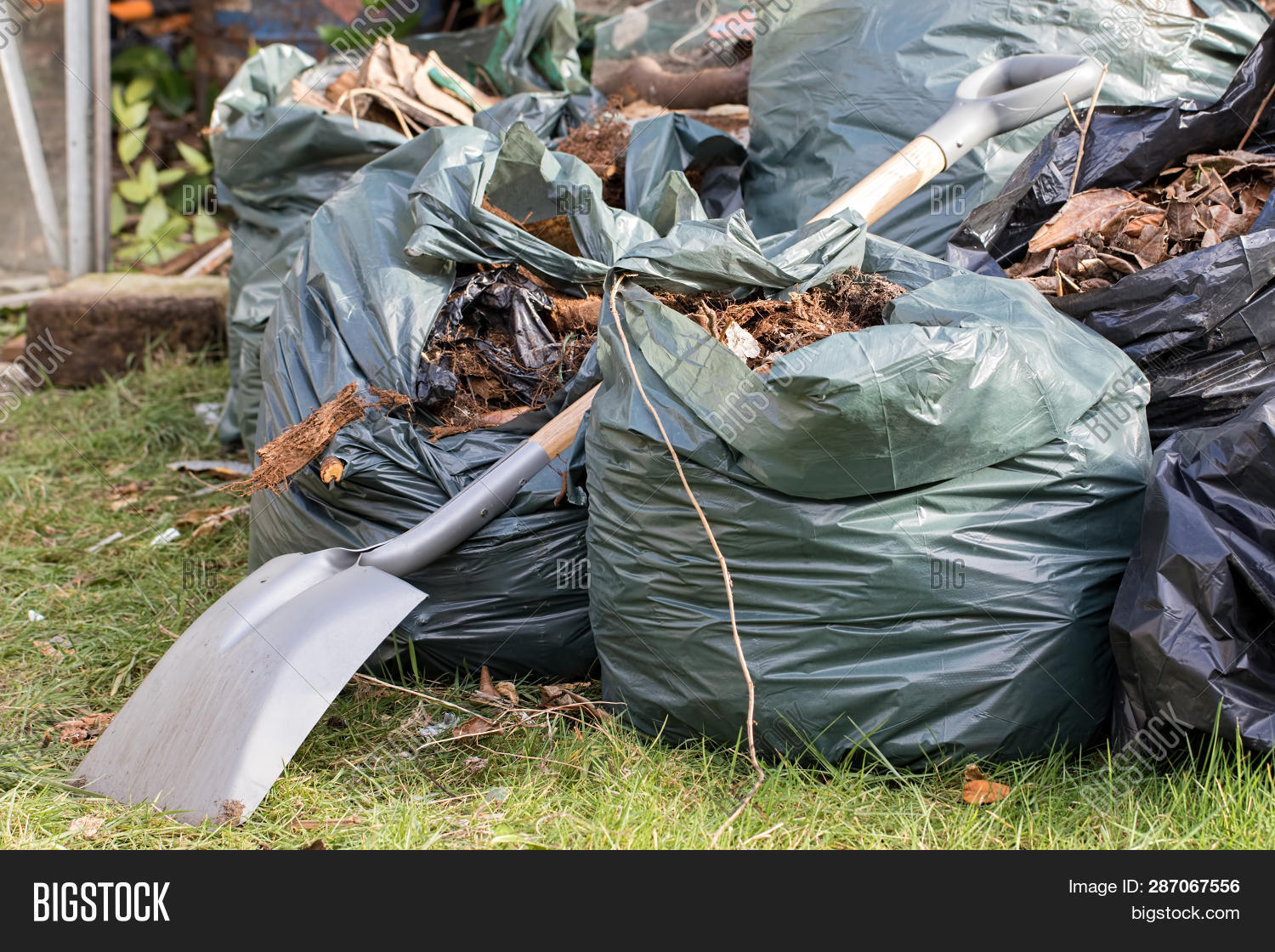 bag,brown,chore,cleaning,collected,environment,garbage,garden,gardener,gardening,home,horticulture,lawn,leaves,managing,recycle,recycling,refuse,rubbish,sack,shovel,spade,tidy,tidying,trash,up,waste