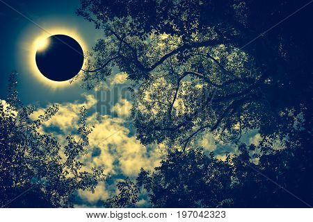 Scientific Natural Phenomenon. Total Solar Eclipse With Diamond Ring Effect Glowing On Sky.