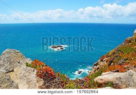 The bright red and green hottentot-fig plants on the edge of the cliff of Cabo da Roca (Cape Roca) Sintra Portugal. stock photo