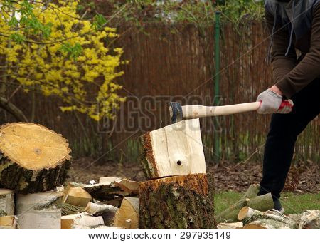 Chopping wood with an ax in his hand. Firewood is getting ready for winter. Dynamic view. The farm is self-sufficient. stock photo