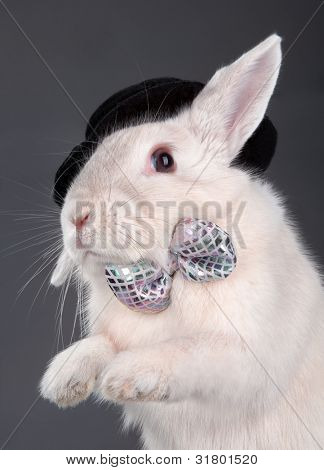 Portrait of cute rabbit in top hat and bow-tie. Isolated on dark background stock photo