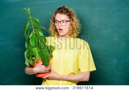 Botany and nerd concept. Woman school teacher chalkboard background carry plant in pot. Take good care plants. Greenery benefits. Botany and biology lesson. Botanical expert. Botany education stock photo