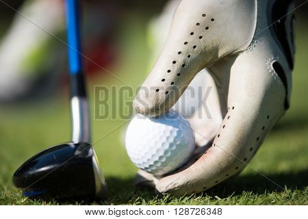 golf player placing ball on tee. beautiful sunrise on golf course landscape  in background stock photo