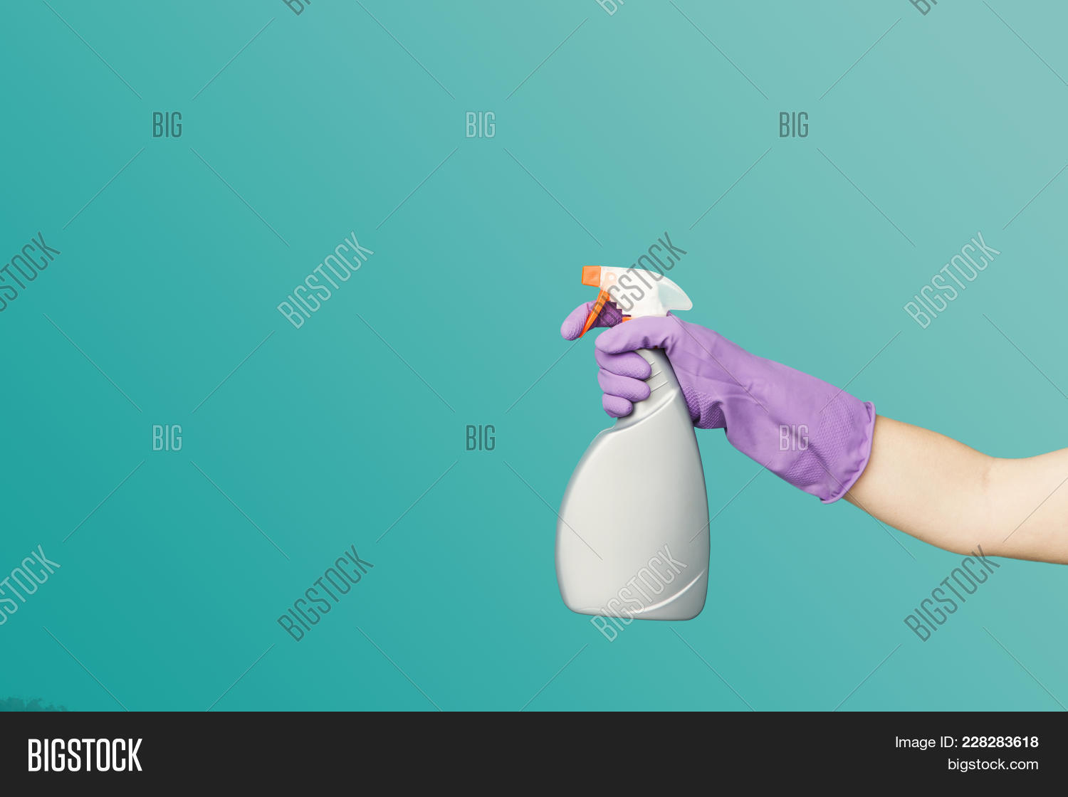 A Hand In Purple Glove Holding A Spray Of Cleaning Fluid On A Blue Background, Copy Space. Household