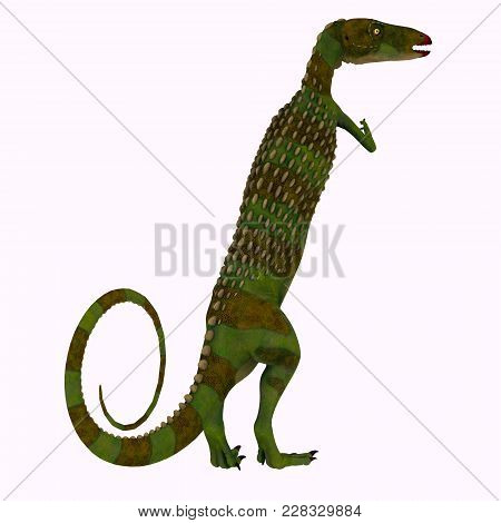 Scutellosaurus Dinosaur Tail 3d illustration - Scutellosaurus was an armored herbivore dinosaur that lived in Arizona, USA during the Jurassic Period. stock photo