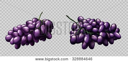 Realistic grapes bunches set, ripe purple berries isolated on transparent background, design element for natural fruit juice or wine advertising or package design 3d vector illustration icon, clip art stock photo