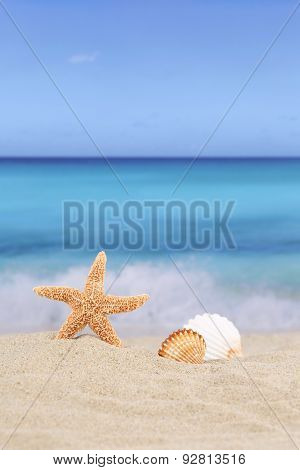 Beach Background Scene In Summer Vacation Holidays With Sea And Copyspace-Dishwasher Magnet Skin (size 24x24)