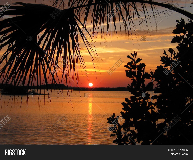 beauty,clouds,distance,dusk,florida,florida beach,framed,horizon,indian river,ocean,orange,palm tree,palm trees,river,silhouette,smyrna beach,sunrise,sunset,sunset beach,trees,twilight,vacation,water