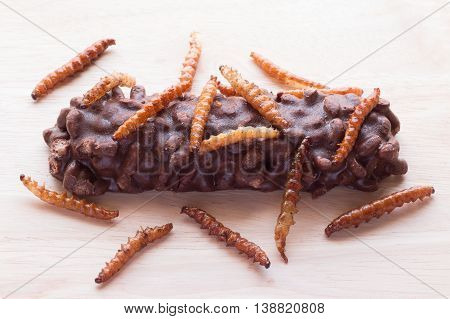 Fried insects - Wood worm bamboo worm insect crispy and candy coated chocolate wafer bars on wooden background. Great source of protein for children Select focus stock photo