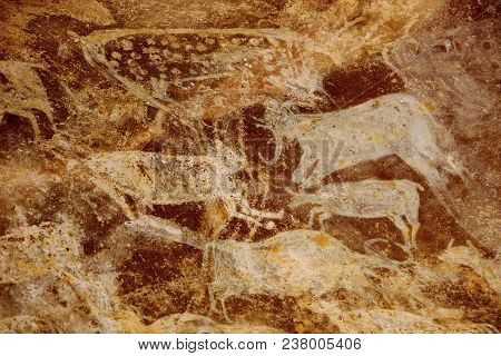 Details Of Painting By Primitive People At Bhimbetka Caves Near