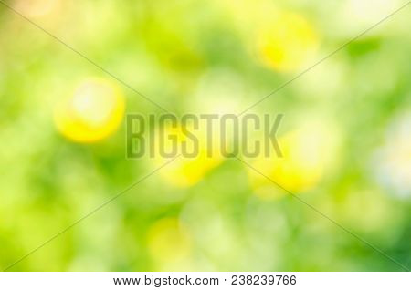 Natural green yellow blurred background. Green yellow bokeh on nature defocus abstract blur background. Abstract background in yellow and green tones. Natural outdoors bokeh background in green and yellow tones. Defocused bokeh lights. Blurred bokeh. Boke