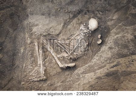 Archaeological excavations. Top view of the burial of a person, bones, skull with two ritual ceramic pots and a scale ruler. stock photo