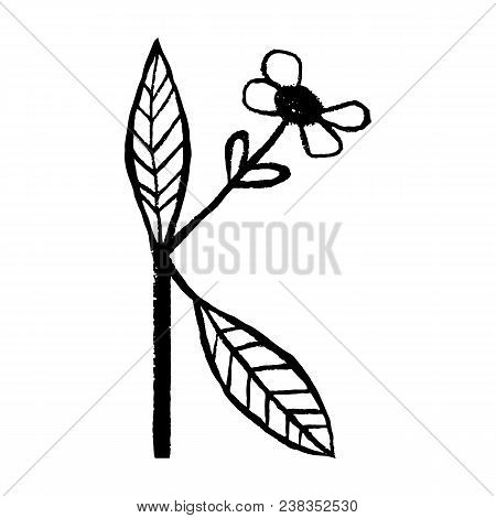 Handdrawn latin alphabet. The letter K - floral element of alphabet made from hand drawn flowers  for your lettering design. Spring floral ABC element in vector. stock photo