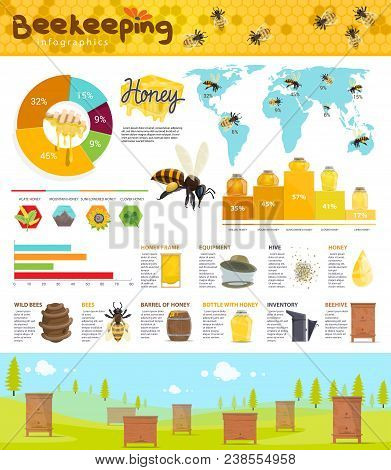Beekeeping infographic with honey production statistic world map. Pie chart, graph and diagram with honey bee, beehive and honeycomb, apiary, honey frame and beekeeper tool for apiculture theme design stock photo