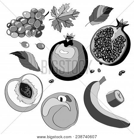 Vector illustration, set. Grapes, grapes, grapes, pomegranate, garnet, half pomegranate, pomegranate, peach, peach, half peach, peach leaves banana and a piece of banana Black and white and gray image stock photo
