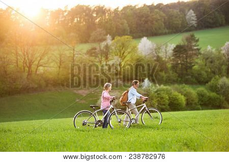 Beautiful senior couple outside in spring nature, walking with bicycles on grassland. stock photo