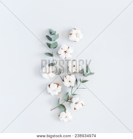 Flowers composition. Pattern made of cotton flowers and eucalyptus branches on pastel blue background. Flat lay, top view, square stock photo