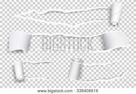 Torn paper. Ripped sheets, curl vector paper elements isolated on transparent background. Illustration torn edge, rip sheet curl stock photo