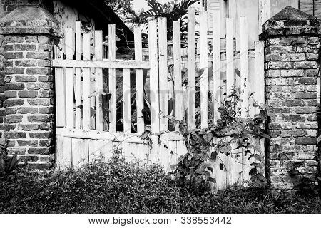 Entrance gate to abandoned old countryside property. Old wooden picket gates overrun/ overgrown by wild plants and vines with sturdy brick wall concrete columns. Deserted rural residential home lot. stock photo