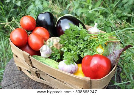 Wicker basket with autumn vegetables. Harvest. Agriculture. stock photo