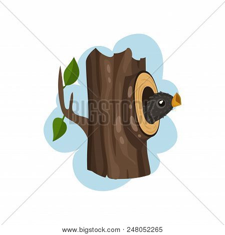 Nestling sitting in hollow tree, hollowed out old tree and cute bird inside vector Illustration isolated on a white background. stock photo