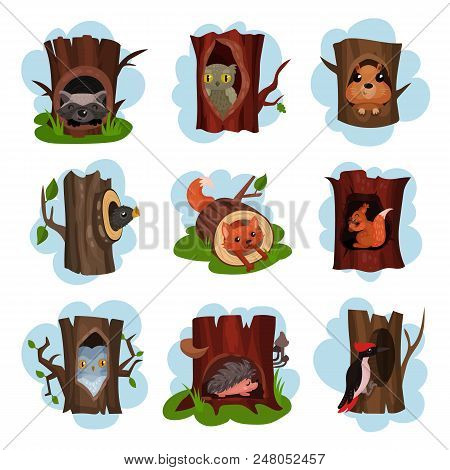 Cute animals and birds sitting in hollow of trees set, hollowed out old trees with fox, owl, hedgehog, raccoon, woodpecker, squirrel animals inside cartoon vector Illustrations on a white background stock photo