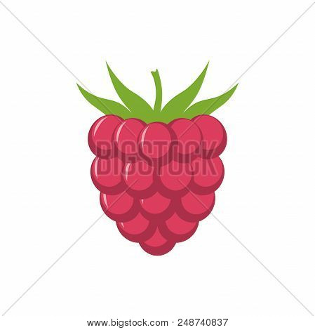 Raspberry with leaf vector icon. Raspberry icon clipart. Raspberry cartoon. stock photo
