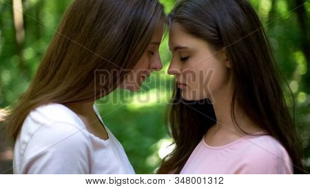 Tender feelings of two beautiful lesbians, affectionate attitude, first love stock photo