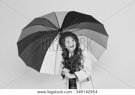 If you dont want it to rain always carry umbrella. Cute little girl check up rain on yellow background. Adorable small child hold rain accessory. Rain forecast. Rainy autumn weather. stock photo