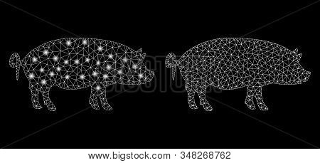 Glossy mesh swine with lightspot effect. Abstract illuminated model of swine icon. Shiny wire frame triangular mesh swine icon. Vector abstraction on a black background. stock photo
