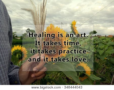 Inspirational quote - Healing is an art. It takes time, it takes practice and it takes love. With blurry background of sunflowers garden and hand holding wild grass flower. Healing motivational words with nature. stock photo