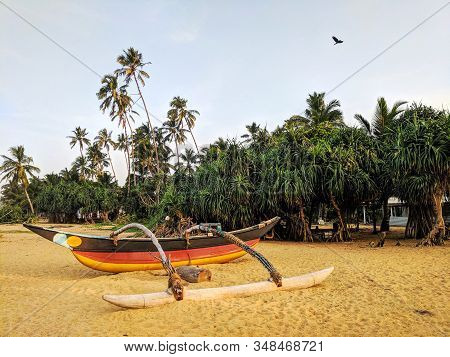Ethnik fishing boat on a sandy tropical beach with palm trees. Old traditional fishing boats on the ocean beach, Sri Lanka. Scenic tropical beach with wooden rowing boats and coconut palms. Ethnic primal boats on the sand coast. Sea fishing canoe. stock photo