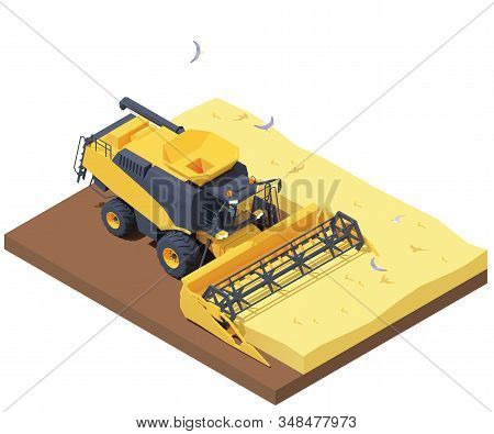 Vector isometric combine harvester working in wheat field. Wheat harvesting process with modern combine. Agricultural machinery cropping cereal field stock photo