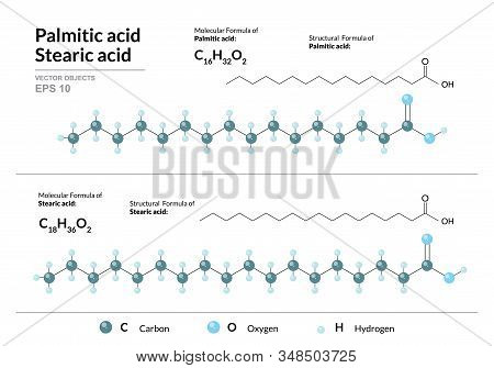 Palmitic and Stearic acids. Hexadecenoic and Octadecanoic Acids. Structural chemical formula and molecule 3d model. Atoms with color coding. Vector illustration stock photo