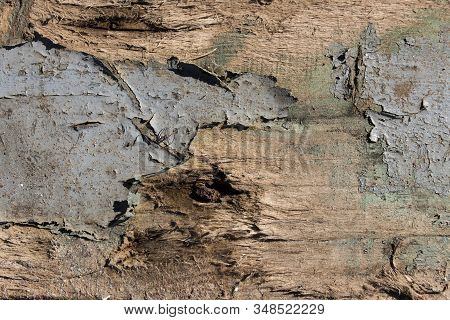 old wood texture background, texture wooden background of wooden painted texture surface with peeling paint, old rough horizontal wooden pattern with traces of paint, wood textures backgrounds, cracked paint on wood, rough wooden pattern with traces of li stock photo