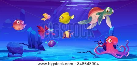 Underwater sea life. Vector cartoon illustration of ocean animals and fish. Undersea landscape with cute octopus, turtle and different fish. Funny aquatic creatures stock photo