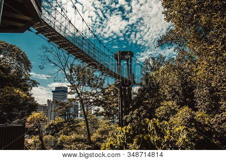 Eco park among concrete jungle. Suspension bridge. Kuala Lumpur nature. Travel to Malaysia. Healthy leisure activity. Environment friendly engineering. Ecology concept. Asia places. Adventure holiday stock photo