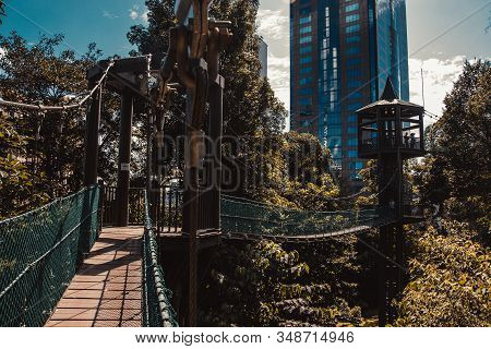 Eco park among Kuala Lumpur concrete jungle. Suspension bridge. Travel to Malaysia. Healthy leisure activity. Environment friendly engineering. Ecology concept. Asia places. Adventure holiday stock photo