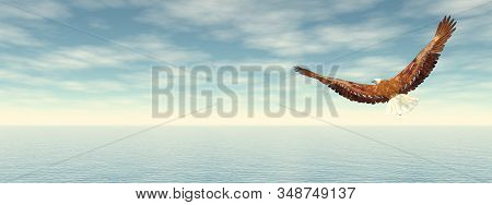 Bald eagle flying to the horizon - 3D render stock photo