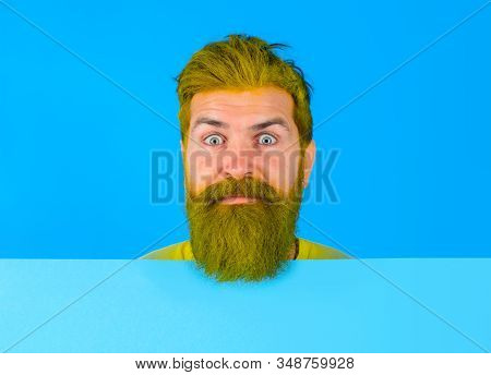 Close up portrait of bearded man holds advertising board. Seasons sale. Discount. Black friday. Advertising and sale. Online shopping. Advertising banner. Copy space. Barber fashion. Beauty marketing stock photo