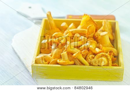 raw mushrooms in box and on a table stock photo