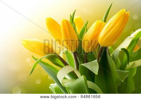 Spring Flowers bunch. Beautiful yellow Tulips bouquet. Elegant Easter or Mother\'s Day gift over natu