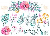 Vector botanical set.Colorful purple flower gathering with leaves and flowers,drawing watercolor