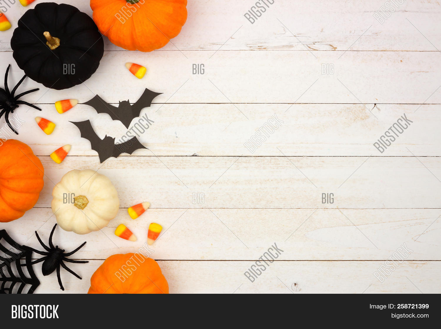 above,autumn,backdrop,background,black,border,candy,celebration,copy,corn,culture,decor,decoration,design,edge,fall,festive,flat,frame,group,halloween,holiday,home,horror,lay,modern,october,or,orange,overhead,party,pumpkins,scary,season,seasonal,side,simple,space,spider,spiderweb,spooky,top,traditional,treat,trick,view,web,white,wood,wooden