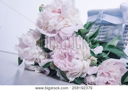 Bouquet of gently pink peonies on a white background and a basket stock photo