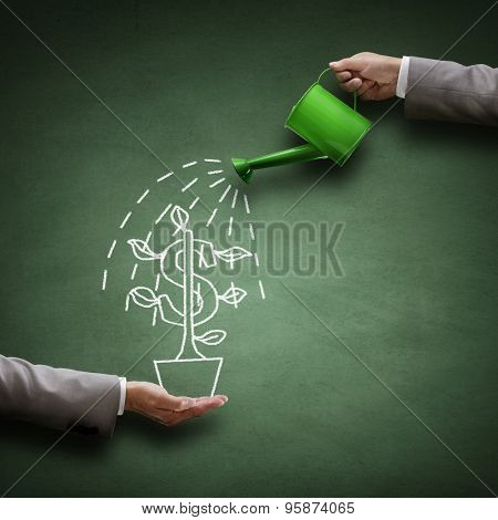 Watering can and money tree drawn on a blackboard concept for business investment, savings and makin