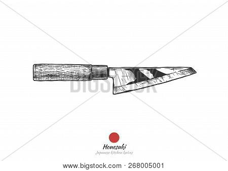 Honesuki, Japanese kitchen knife, used to debone chicken.  Vector hand drawn illustration in vintage engraved style. Isolated on white background. stock photo
