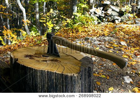 Camping. Ax in the stump during chopping wood. Preparing to kindle a fire using wood and an ax. stock photo