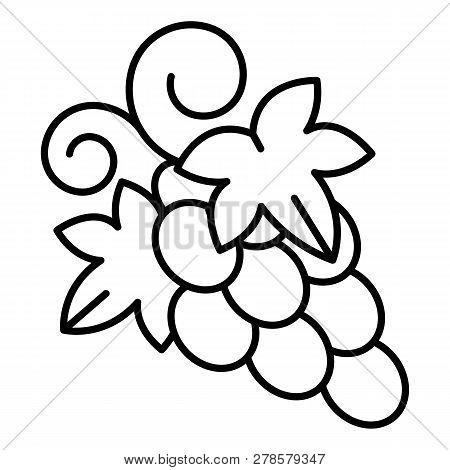 Table grape icon. Outline table grape icon for web design isolated on white background stock photo